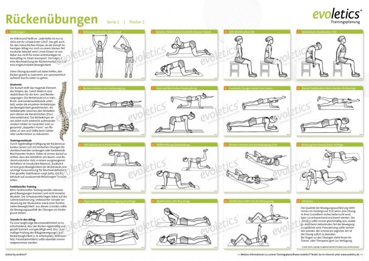 Poster Rückenübungen | Allgemeine Trainingsposter | Poster ... Orange