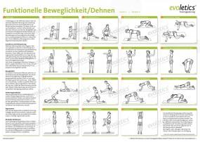 Poster Beweglichkeit/Dehnen