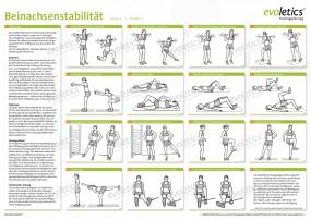 Poster Beinachsenstabilität